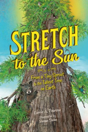 Stretch to the Sun