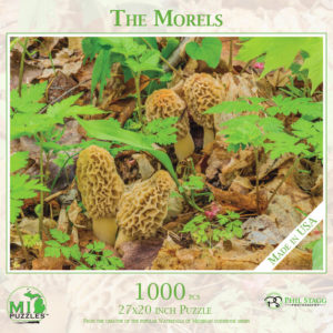 The Morels Puzzle