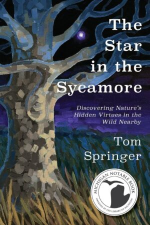 The Star in the Sycamore